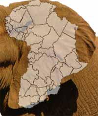 ElephAfrica