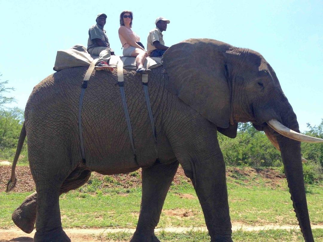 Gundi riding Eleph 4