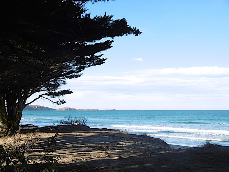 ROAD TRIPS NEW ZEALAND: Christchurch to Dunedin - Beach