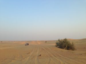 Riding the Dunes in a 4-wheel drive