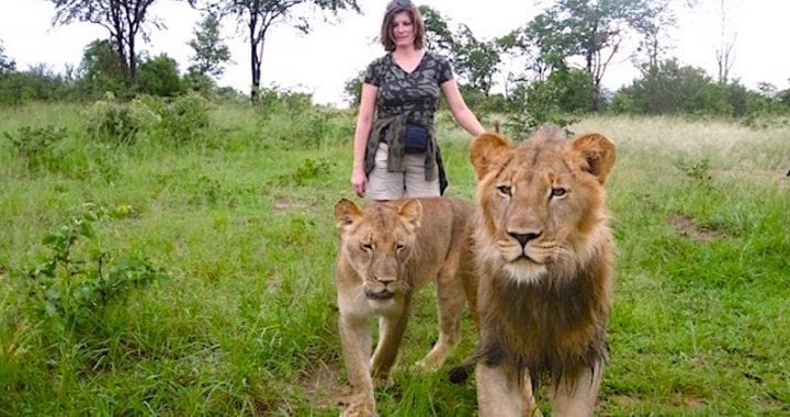 a walk with lions