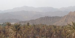 Dubai Day Trips: Fujairah East Coast