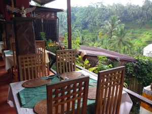 rice terrace with restaurant