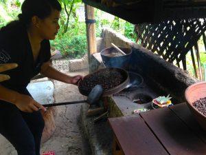 Bali Day Trips - coffee plantation