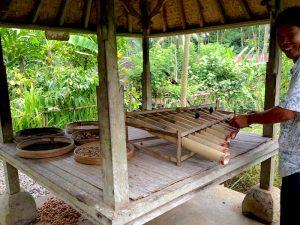 Balinese Marima