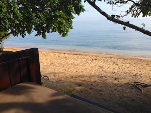 The Menjangan view from Beach Villas
