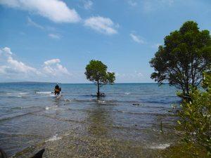 National Park ocean