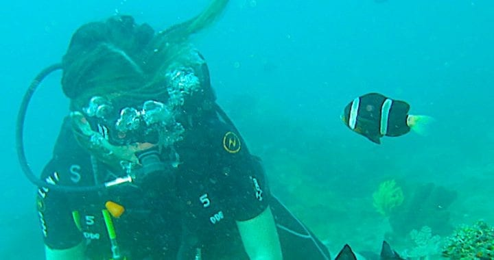 Scuba Diving in Amed