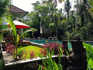 Luxury vilas in Ubud