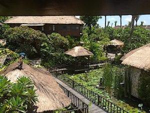 rejang view