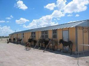 Rakops pre school John Walters Botswana missionary